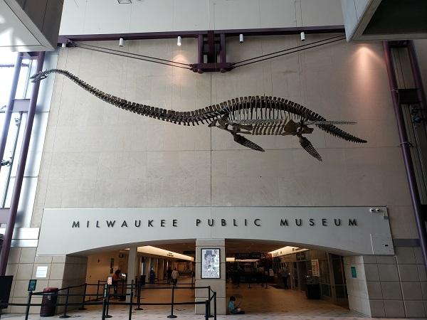 Plesiosaur at the Milwaukee Public Museum
